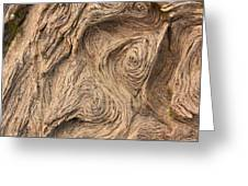 Wood Swirls Greeting Card
