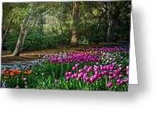 Wooded Bliss Greeting Card