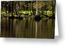 Wooded Reflection Greeting Card