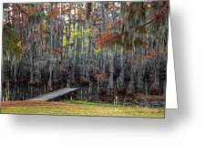 Wooden Dock On Autumn Swamp Greeting Card