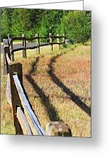 Wooden Fences Greeting Card