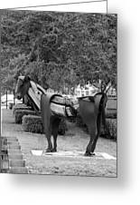 Wooden Horse6 Greeting Card