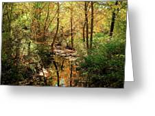 Woodland Brook  Greeting Card
