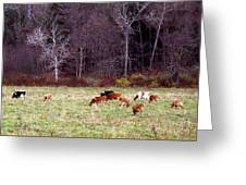 Woodland Dairy Greeting Card