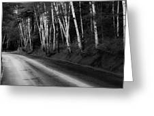Woodland Drive Greeting Card by Wendell Thompson