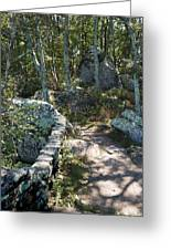 Woodland Path With Stone Wall Greeting Card