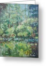 Woodland Pond Greeting Card