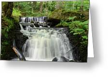 Woodland Waterfall Greeting Card
