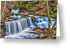 Wateralls In The Woods Greeting Card