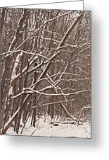 Woodland Winter Greeting Card