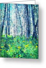 Woods 1 Greeting Card