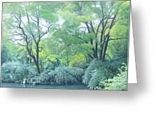 Woods Beside The Pond Greeting Card