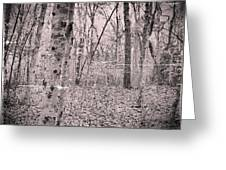 Woods Darkly Greeting Card