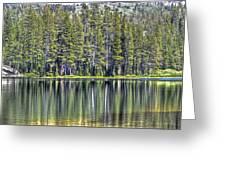 Woods Lake 4 Greeting Card