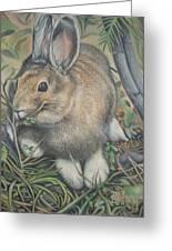 Woods Rabbit Greeting Card