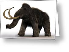 Wooly Mammoth Greeting Card