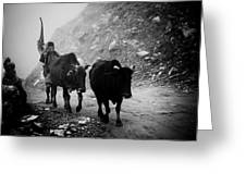 Work Hard Tamang People Langtang Nepal Greeting Card