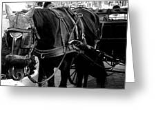 Working Horse Greeting Card
