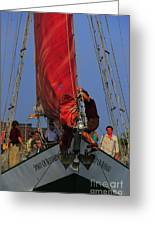 Working The Sails Greeting Card by Kathleen Struckle