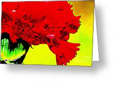 Wow Carnation Greeting Card