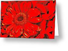 Wow Red Greeting Card