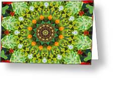 Wreath Kaleidoscope Greeting Card