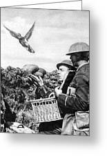 Wwi Releasing British Carrier Pigeon Greeting Card