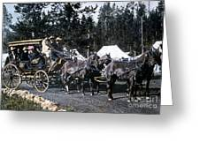 Wylie Coach Yellowstone National Park Greeting Card