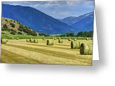 Wyoming Mountain Hay Farm Greeting Card