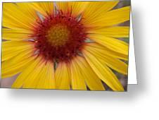 Wyoming Sunflower Greeting Card
