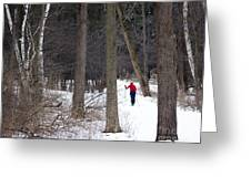 X-country Mendon Ponds Greeting Card