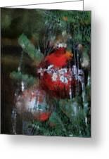 Xmas Red Ornament Photo Art 03 Greeting Card