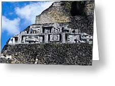 Xunantunich Belize Mayan Temple Close Up Of Frieze Greeting Card
