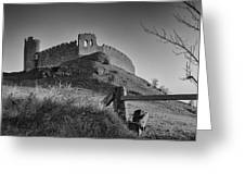 Roche Castle Greeting Card by Pro Shutterblade