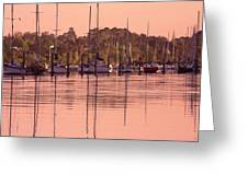 Yachts At Dawn Greeting Card
