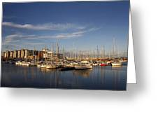 Yachts In A Marina At Sunset Greeting Card