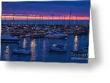 Yachts In Punta Del Este Greeting Card