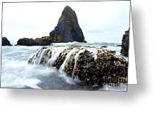 Yaquina Waves Greeting Card by Sheldon Blackwell
