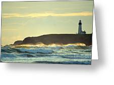 Yaquinas Rolling Waves Greeting Card by Sheldon Blackwell