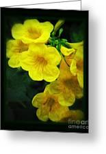 Yellow - Amarillo - Jaune Greeting Card