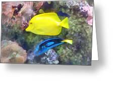 Yellow And Blue Tang Fish Greeting Card