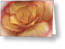 Yellow And Orange Rose Greeting Card
