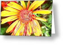 Floral Grunge Greeting Card