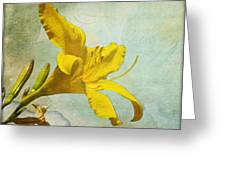 Yellow Asiatic Lilly Iv Greeting Card