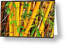 Yellow Bamboo Greeting Card