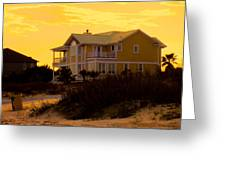 Yellow Beauty At Isle Of Palms Greeting Card