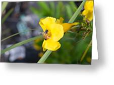 Yellow Bell Flower With Honeybee Greeting Card