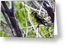 Yellow Bird Greeting Card