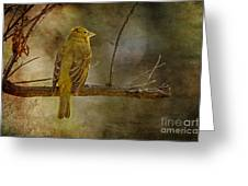 Yellow Bird Resting Greeting Card by Pam Vick