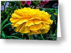 Yellow By Nature Greeting Card